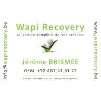 LogoWapiRecovery200
